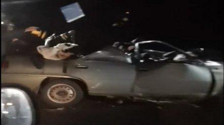 На воронежской трассе в ДТП с двумя грузовиками разбился 21-летний водитель