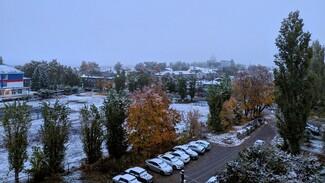«Шёл стеной». Воронежцы поделились в соцсетях фотографиями первого снега