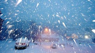 МЧС предупредило жителей Воронежской области о метели и снежных заносах