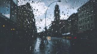 Синоптики предупредили воронежцев о надвигающихся дождях и грозах