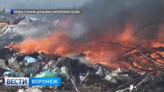 Очевидцы: в Воронежской области из-за загоревшейся свалки едва не сгорел посёлок
