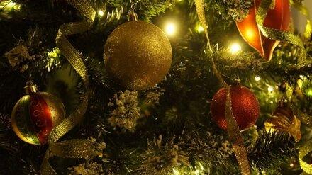 В Воронежской области 31 декабря официально объявили выходным днём