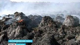 В Петропавловком районе сгорело около двух тонн сена