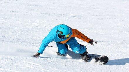 На месте популярного горнолыжного клуба под Воронежем могут появиться коттеджи