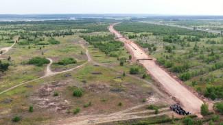 Воронежцы встали на защиту посаженных после пожаров-2010 деревьев