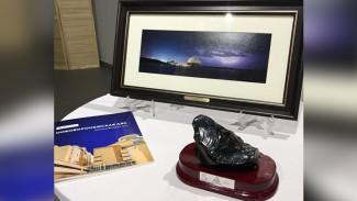 На благотворительном аукционе нововоронежские атомщики продали переработанные отходы
