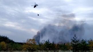 Авиация МЧС сбросила ещё 836 тонн воды на горящую Воронежскую область