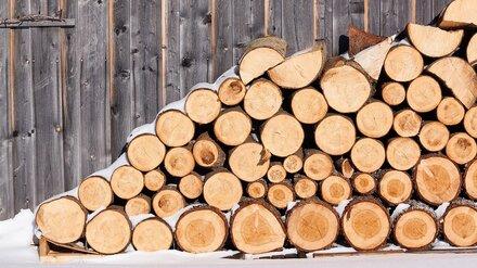 Воронежец незаконно спилил клёны на полмиллиона рублей, чтобы сэкономить на дровах