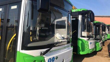 Более 60 новых низкопольных автобусов появятся на улицах Воронежа до конца года