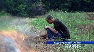 Огонь уничтожает гектары лесов и посевов в Воронежском регионе