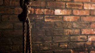 В Воронежской области 15-летний сирота покончил с собой