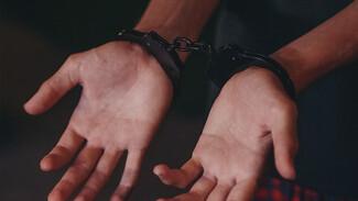 В Воронеже полицейские поймали иностранца за обман пенсионеров на 1,5 млн рублей