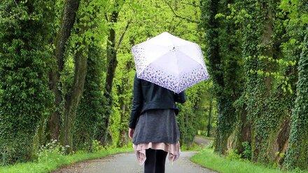 Аномальную жару в Воронежской области сменят похолодание и дожди