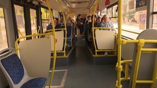 В Воронеже в ДТП с маршруткой пострадала пассажирка