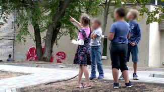 На детской площадке в Воронеже 8-летняя девочка сломала руку