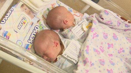 В Воронежской области за полгода родились 95 двойняшек и четверня