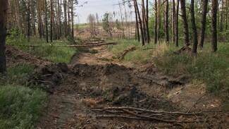 В Воронеже перекопали дорогу к скандально известному озеру Круглое