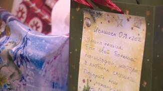 Воронежские депутаты приготовили новогодние подарки для стариков
