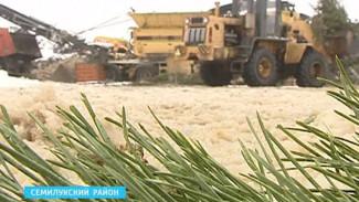 Воронежцы массово переходят на искусственные ёлки – кризис или забота о природе?