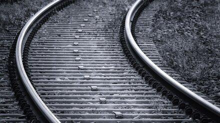 В Воронеже пожилая дачница угодила под поезд