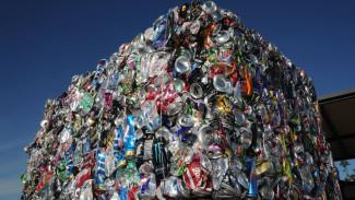 Эксперт рассказал, сколько мусоросортировочных комплексов нужно Воронежской области