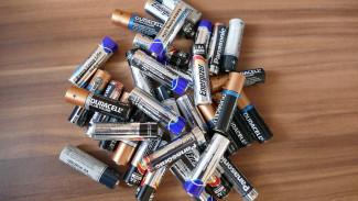 В воронежском парке установят контейнер для использованных батареек
