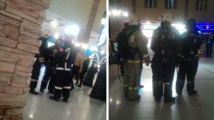В Воронеже в крупный ТЦ из-за поросёнка на гриле приехали спасатели