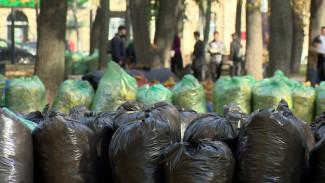Воронежцев позвали на генеральную уборку города