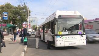 В Воронеже запустят девять новых автобусных маршрутов