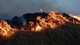 МЧС сообщило о шести действующих в Воронежской области пожарах