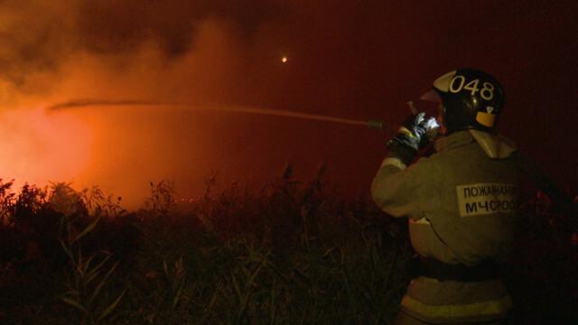 В Воронежской области потушили ландшафтный пожар возле села