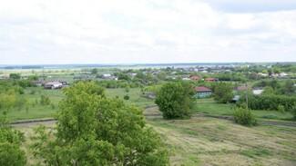 Разработку современной аграрной политики включат в народную программу «Единой России»