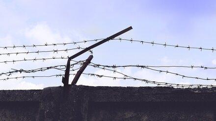Экс-начальника воронежской колонии осудили за принуждение зека к работам на даче