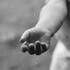 Найденная повешенной воронежская 6-классница была единственным ребёнком в семье