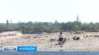 К разработке концепции Петровской набережной в Воронеже привлекут москвичей