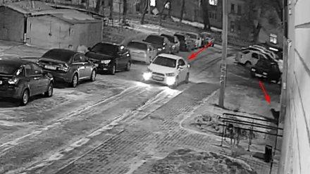 В Воронеже пассажир иномарки на глазах у ребёнка застрелил собаку
