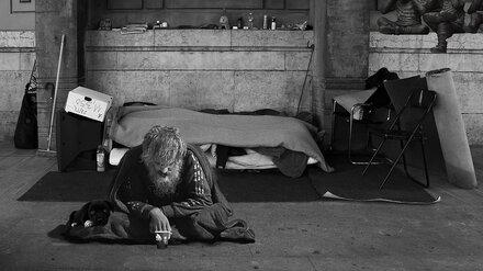Единственный в Воронеже приют для бездомных передумали закрывать