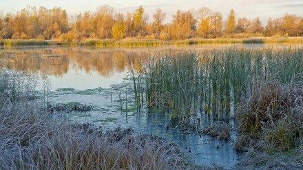 В Воронежской области из реки достали машину с двумя трупами