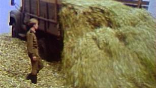 Рекордные урожаи и помощь военных. Как в советские годы работали воронежские агрономы