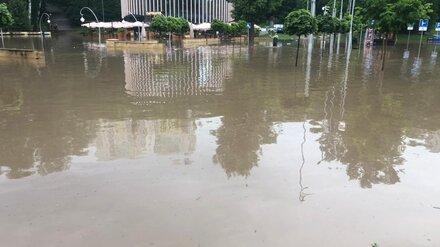 Затопленный Центральный парк в Воронеже временно закрыли
