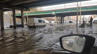 В Воронеже закроют затопленную из-за оттепели дорогу под мостом на бульваре Победы