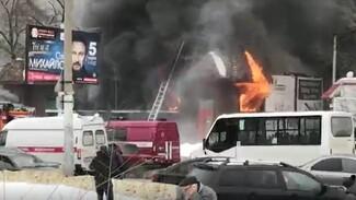 В Воронеже выгорел пивной бар
