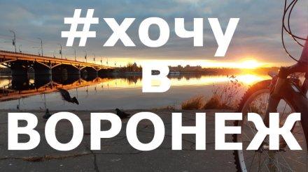 11 лучших фотографий жителей Воронежской области из социальных сетей за неделю