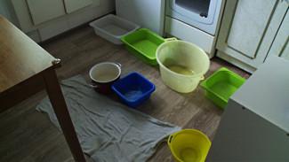 Жильцы пятиэтажки в Воронеже лишились дорогого ремонта из-за потопа