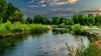 Власти взяли на контроль ситуацию с откачкой воды из реки в Воронежской области