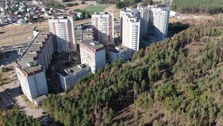 Власти остановили вырубку Северного леса после бунта воронежцев