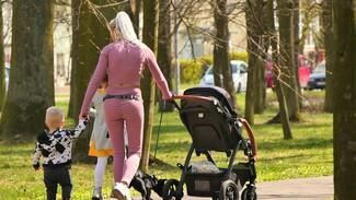 Большинство воронежских многодетных семей перепродали полученные от государства участки