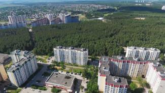 Воронежцы выйдут на генеральную уборку Северного леса
