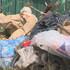 В Воронежской области подсчитают, сколько мусора выкидывают жители