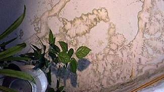 В доме ╧28 на Ростовской с 1956 года не было ни одного ремонта